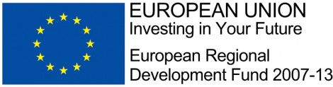 ERDF Colour Logo - Horizontal